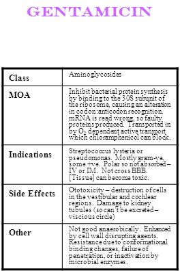 gentamicin Class MOA Indications Side Effects Other Aminoglycosides