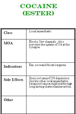 Cocaine (Ester) Class MOA Indications Side Effects Other