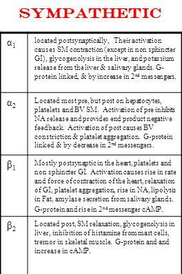 SYMPathetic α1.