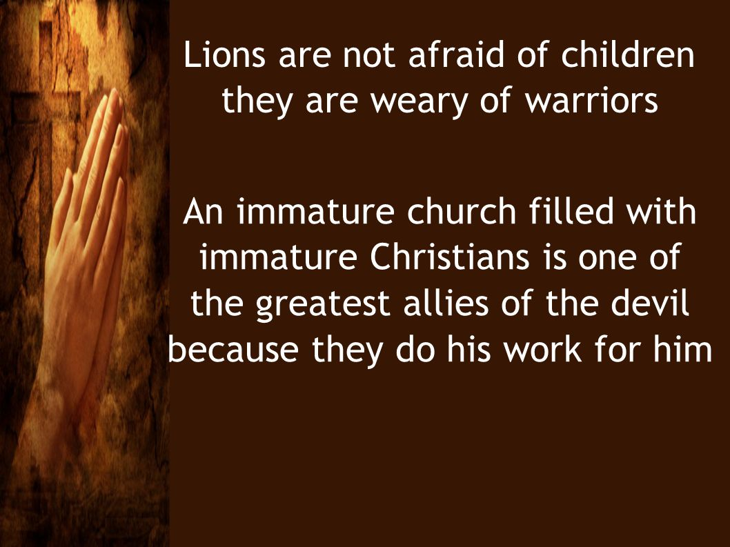 Lions are not afraid of children they are weary of warriors