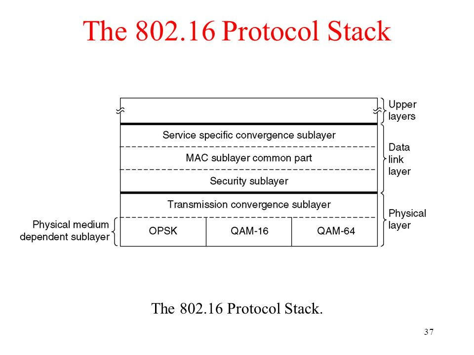 The 802.16 Protocol Stack The 802.16 Protocol Stack.