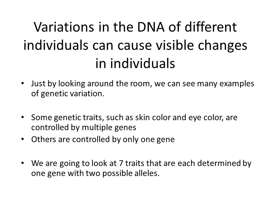 Variations in the DNA of different individuals can cause visible changes in individuals