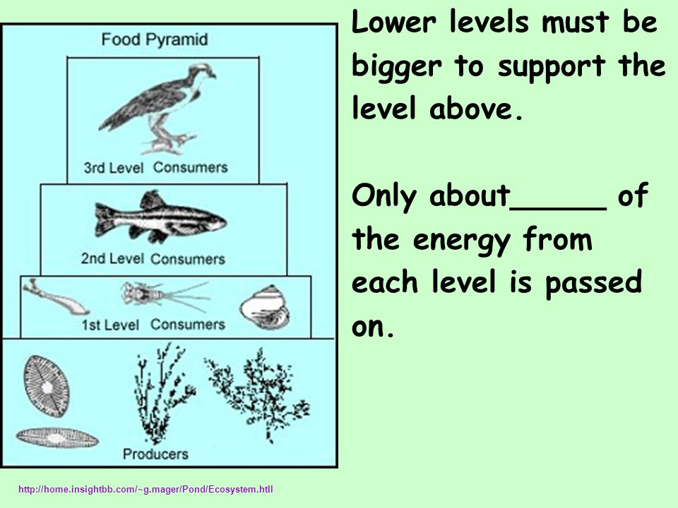 Lower levels must be bigger to support the level above.