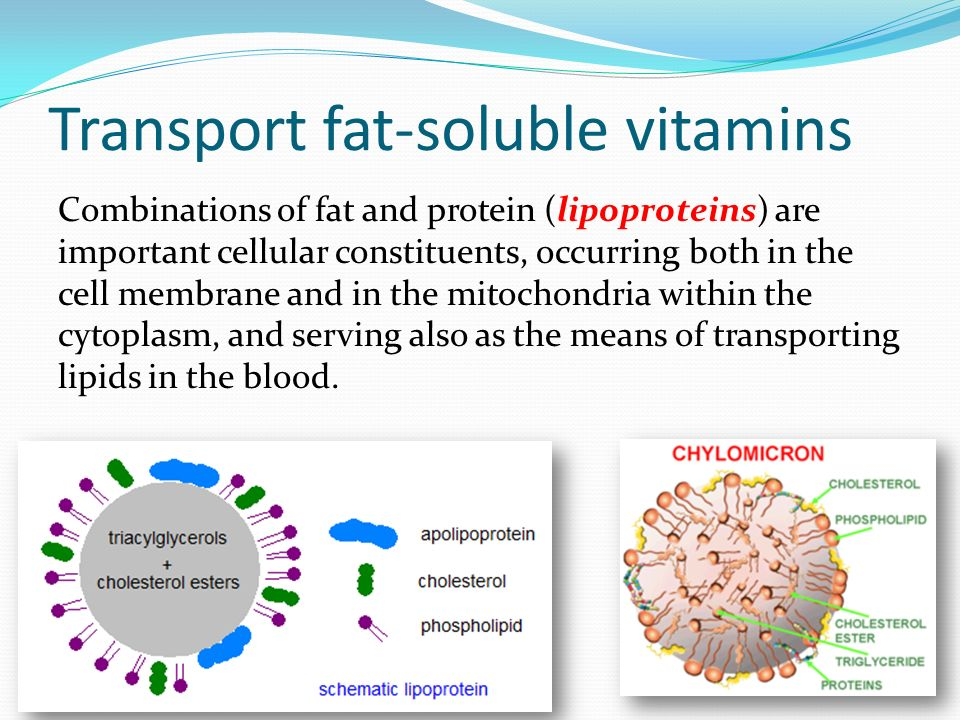 Transport fat-soluble vitamins