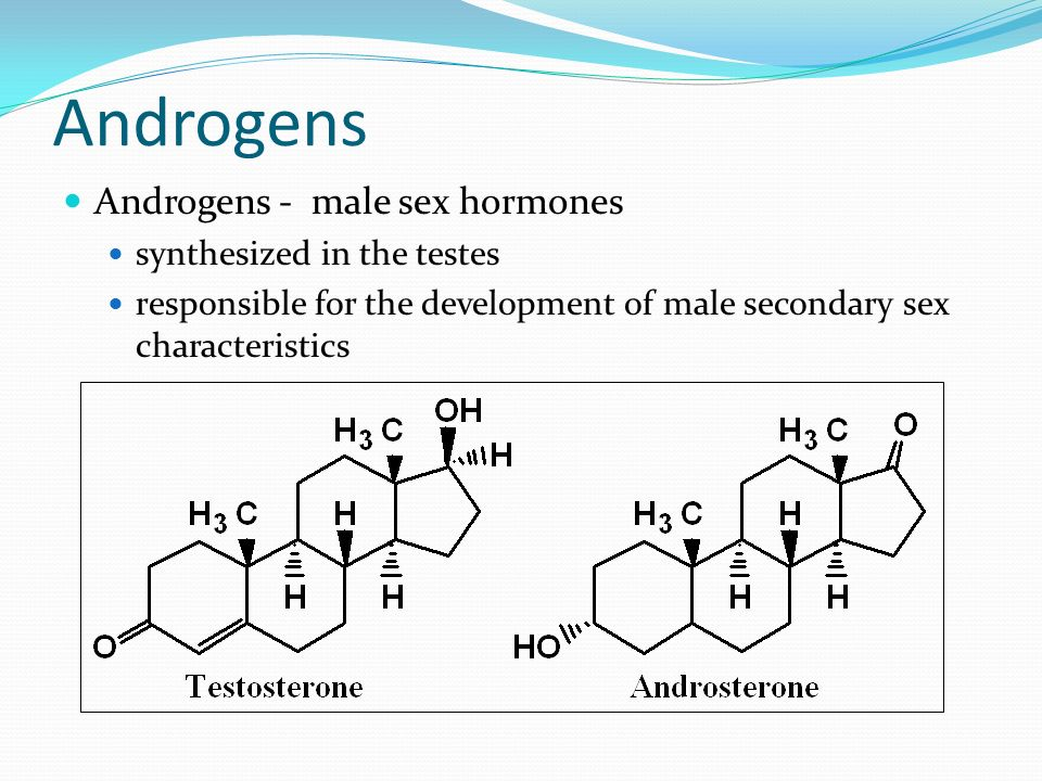 Androgens Androgens - male sex hormones synthesized in the testes