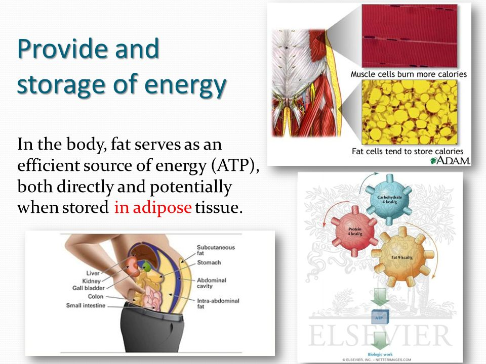 Provide and storage of energy