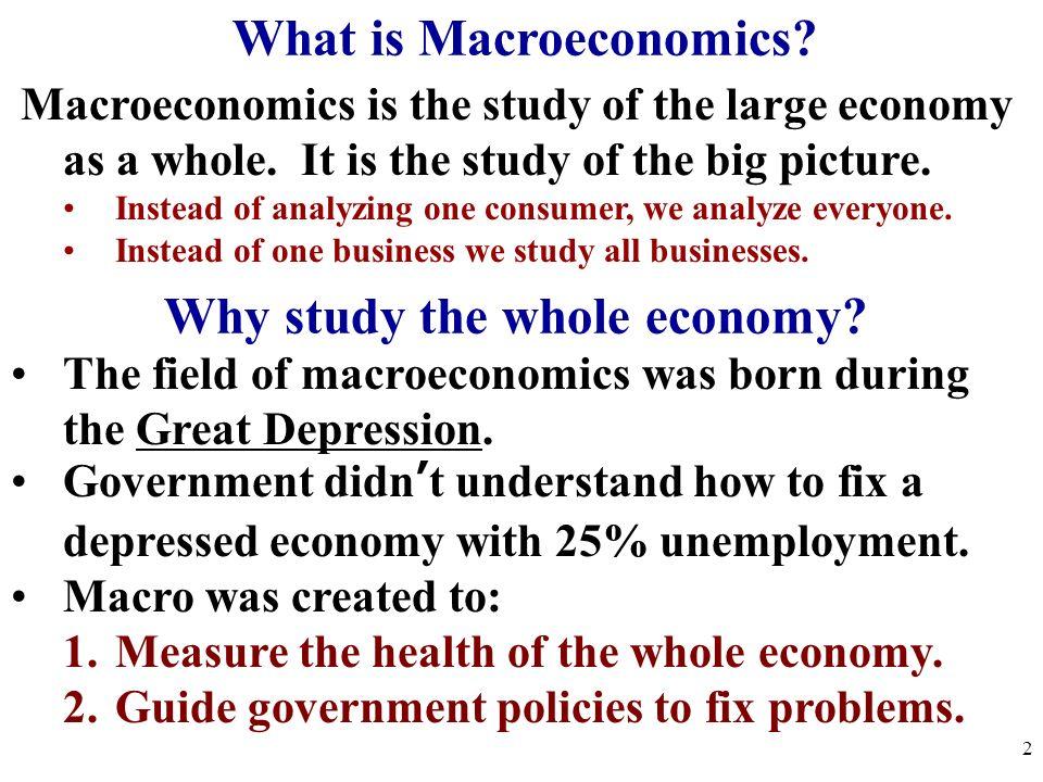What is Macroeconomics Why study the whole economy