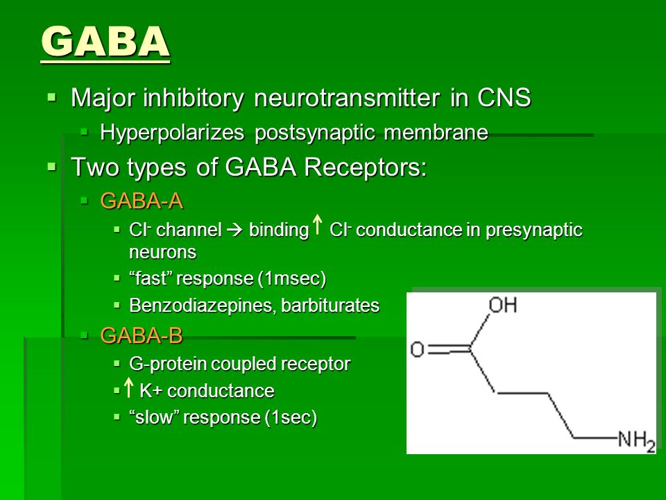 GABA Major inhibitory neurotransmitter in CNS