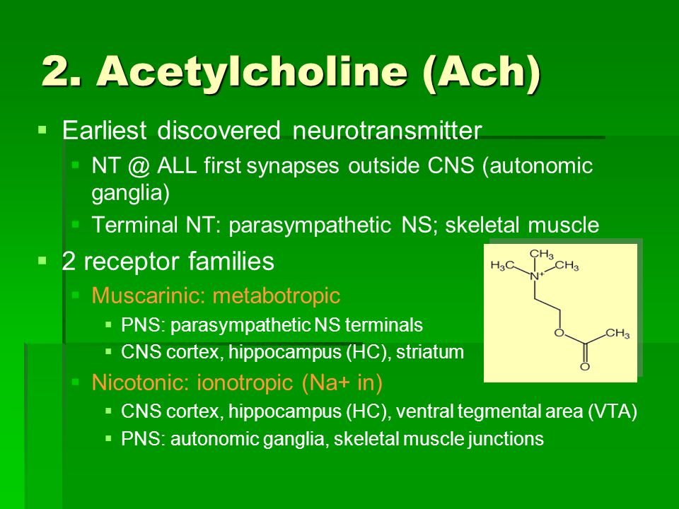 2. Acetylcholine (Ach) Earliest discovered neurotransmitter
