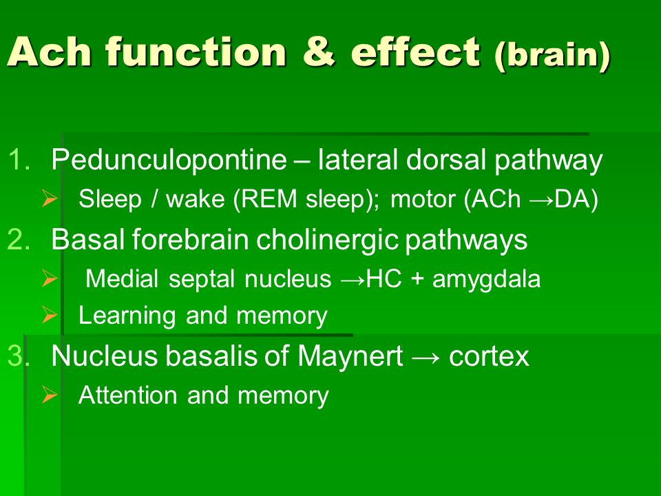 Ach function & effect (brain)