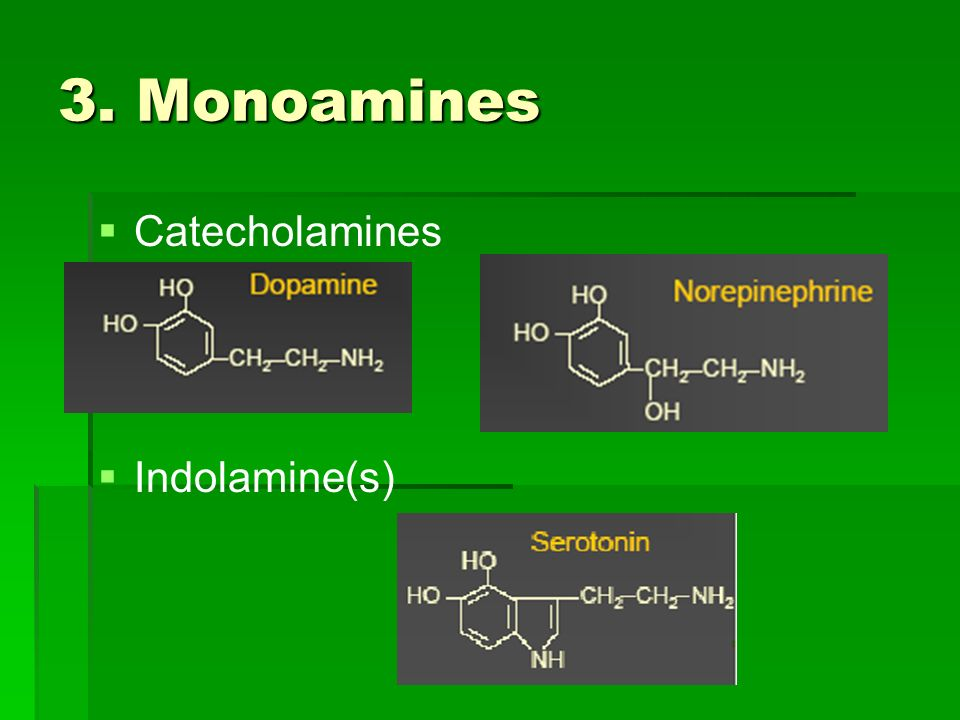 3. Monoamines Catecholamines Indolamine(s)