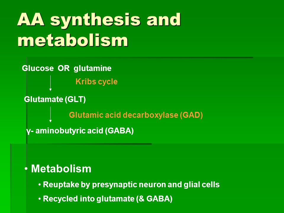 AA synthesis and metabolism
