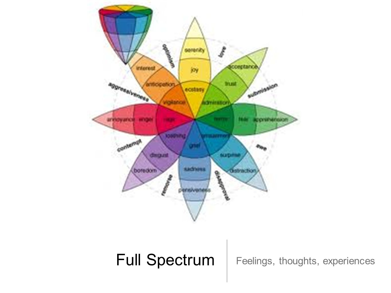 Full Spectrum Feelings, thoughts, experiences