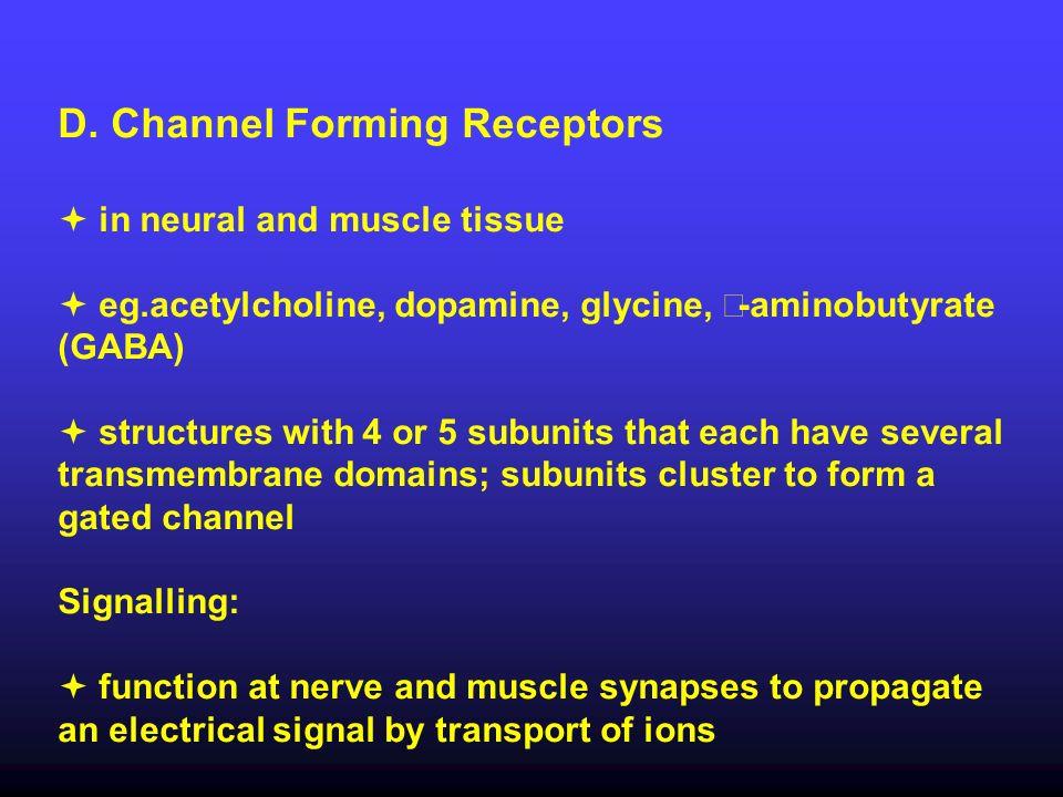 D. Channel Forming Receptors