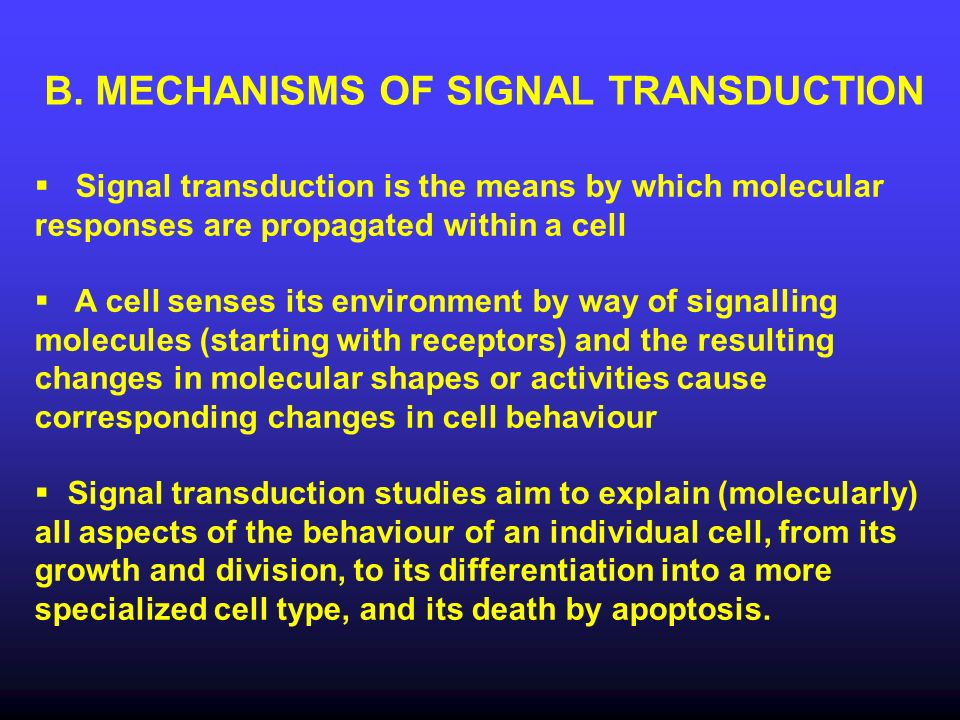 B. MECHANISMS OF SIGNAL TRANSDUCTION