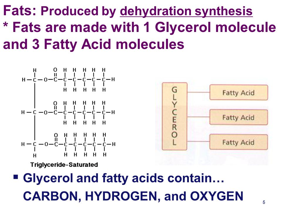 Fats: Produced by dehydration synthesis