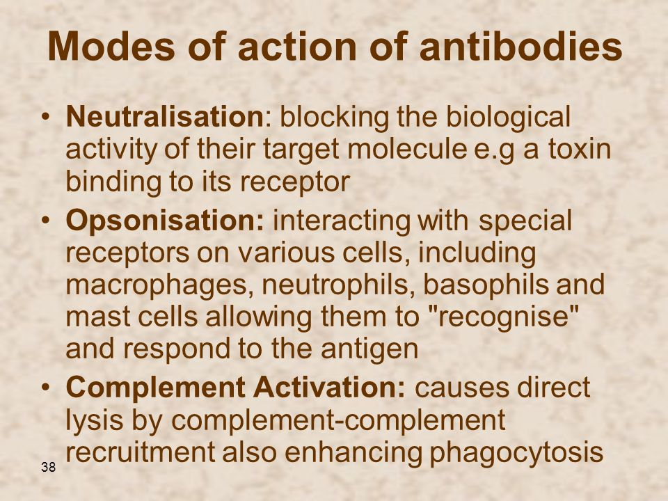 Modes of action of antibodies