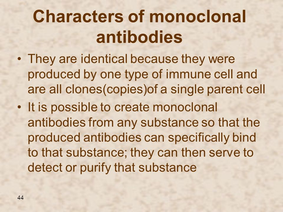 Characters of monoclonal antibodies