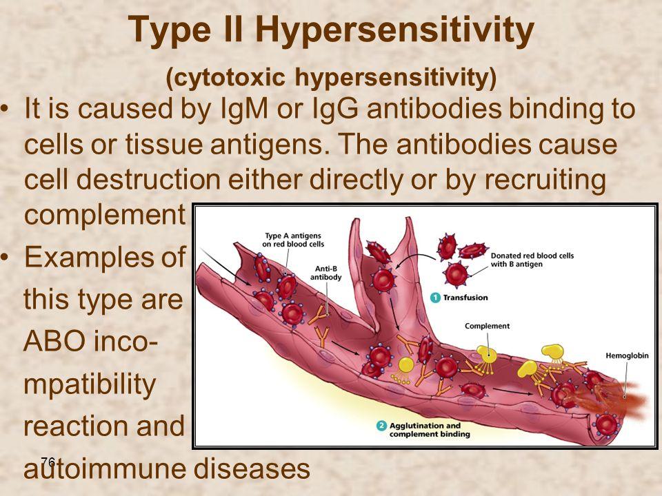 Type II Hypersensitivity (cytotoxic hypersensitivity)
