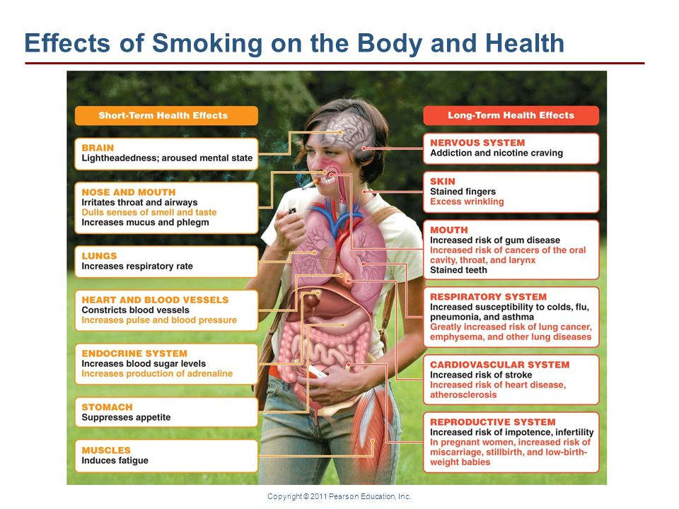 Effects of Smoking on the Body and Health