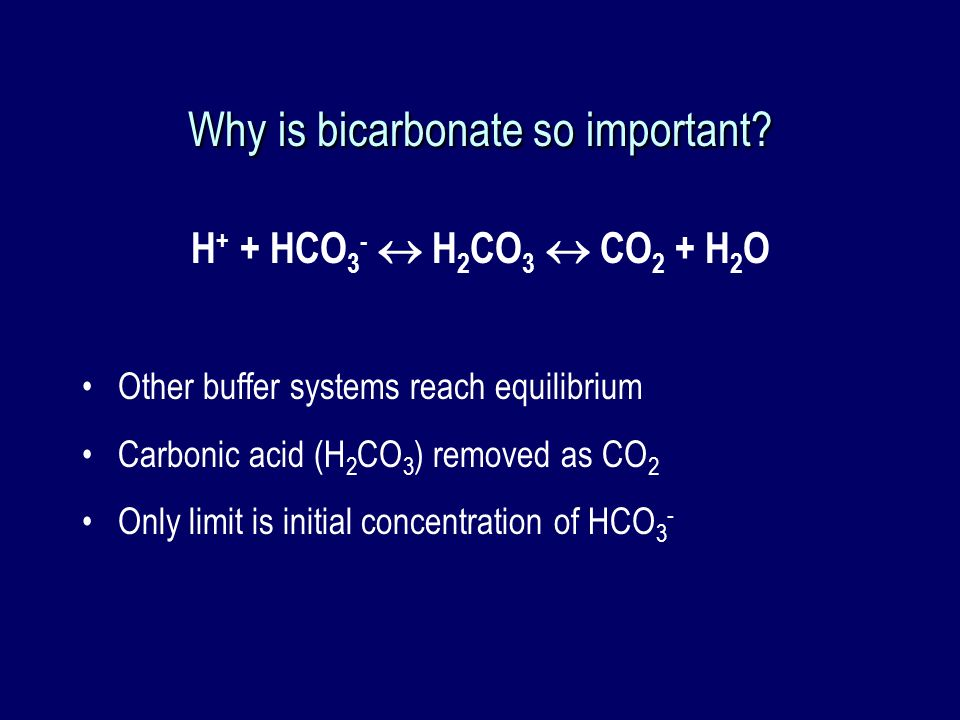 Why is bicarbonate so important