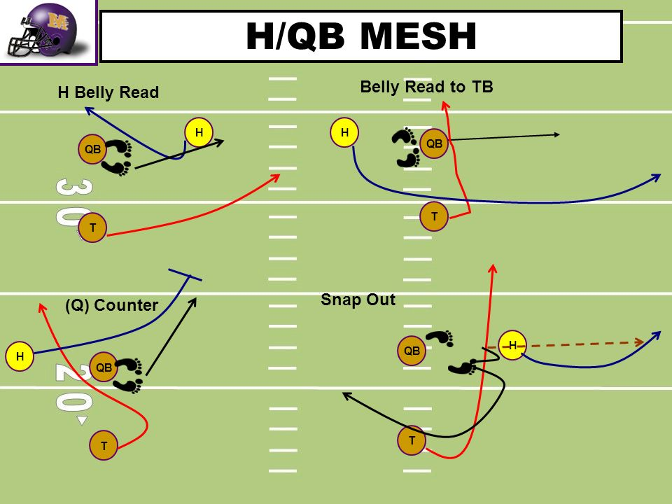 H/QB MESH Belly Read to TB H Belly Read Snap Out (Q) Counter H H QB QB