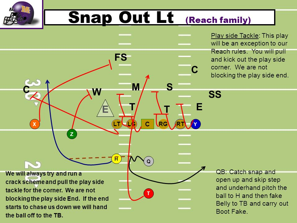 Snap Out Lt (Reach family)