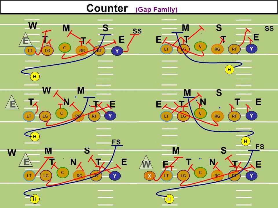 Counter (Gap Family) W M S M S E E T T E E T T W M M S T N N T E E T E