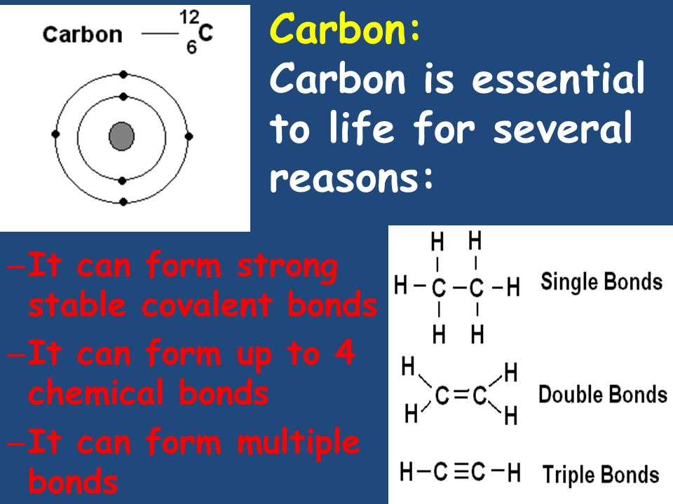 Carbon: Carbon is essential to life for several reasons: