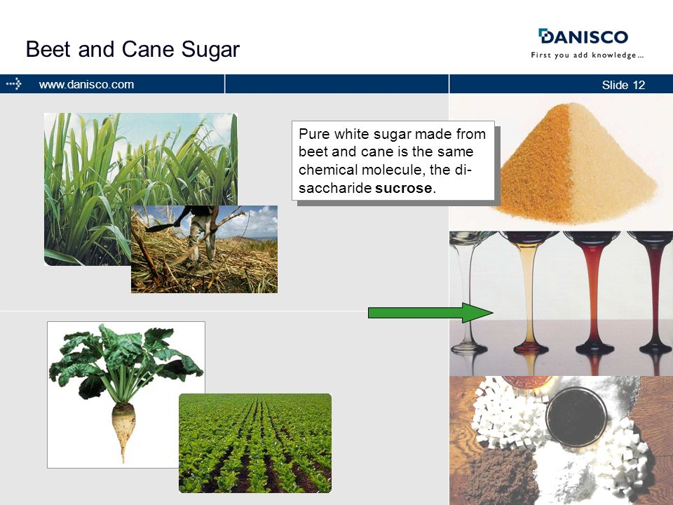 Beet and Cane SugarPure white sugar made from beet and cane is the same chemical molecule, the di-saccharide sucrose.