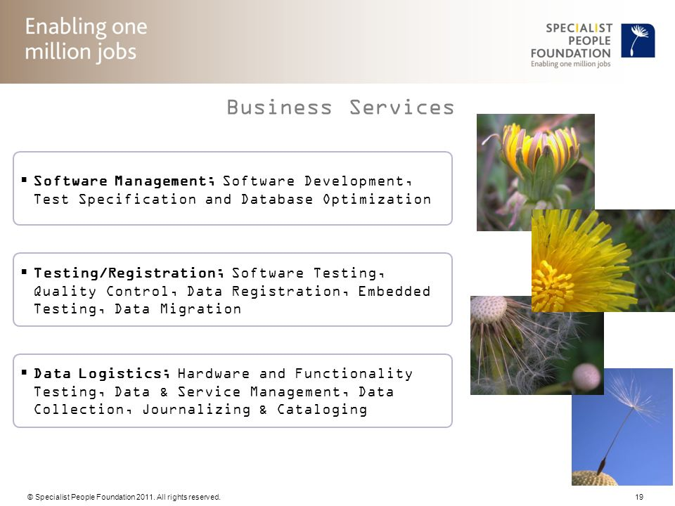 Business Services Software Management; Software Development, Test Specification and Database Optimization.