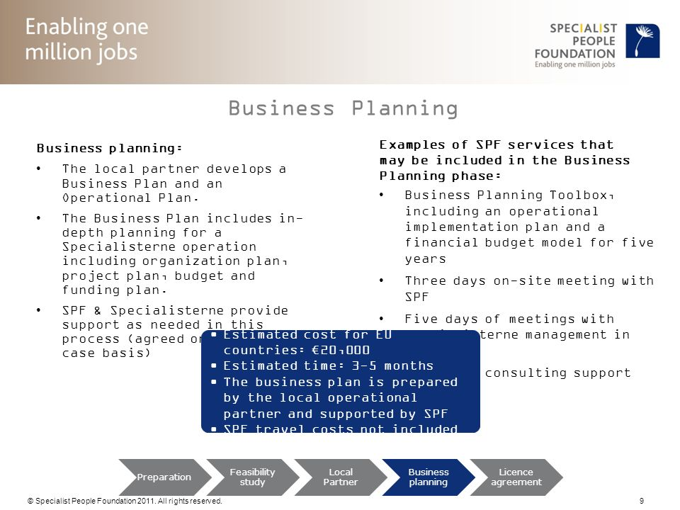 Business Planning Examples of SPF services that Business planning: