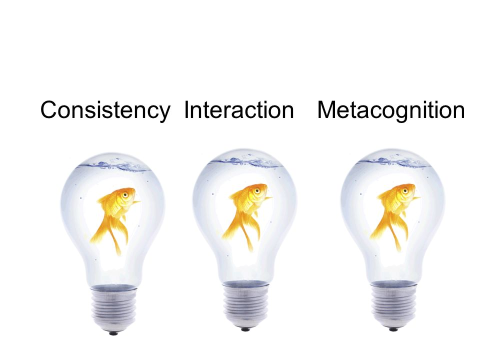 Consistency Interaction Metacognition