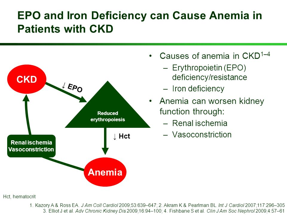 EPO and Iron Deficiency can Cause Anemia in Patients with CKD