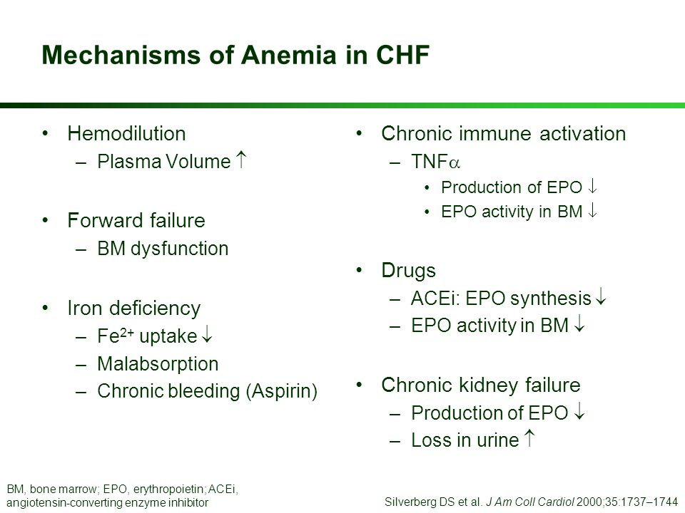 Mechanisms of Anemia in CHF