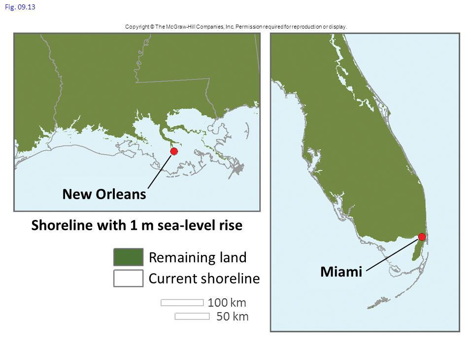 Shoreline with 1 m sea-level rise