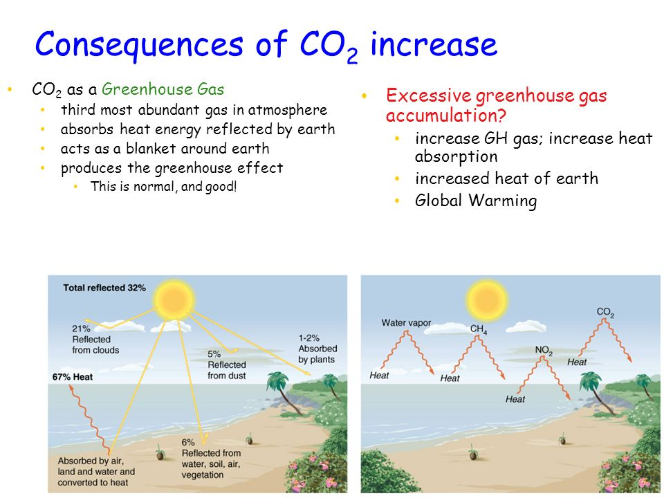 Consequences of CO2 increase