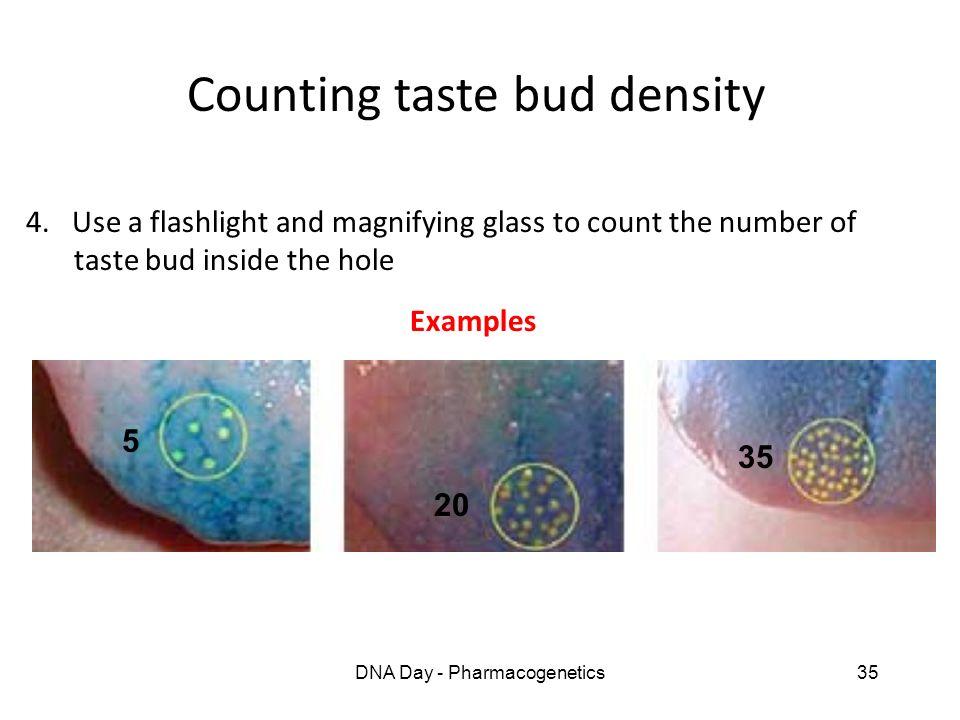 Counting taste bud density
