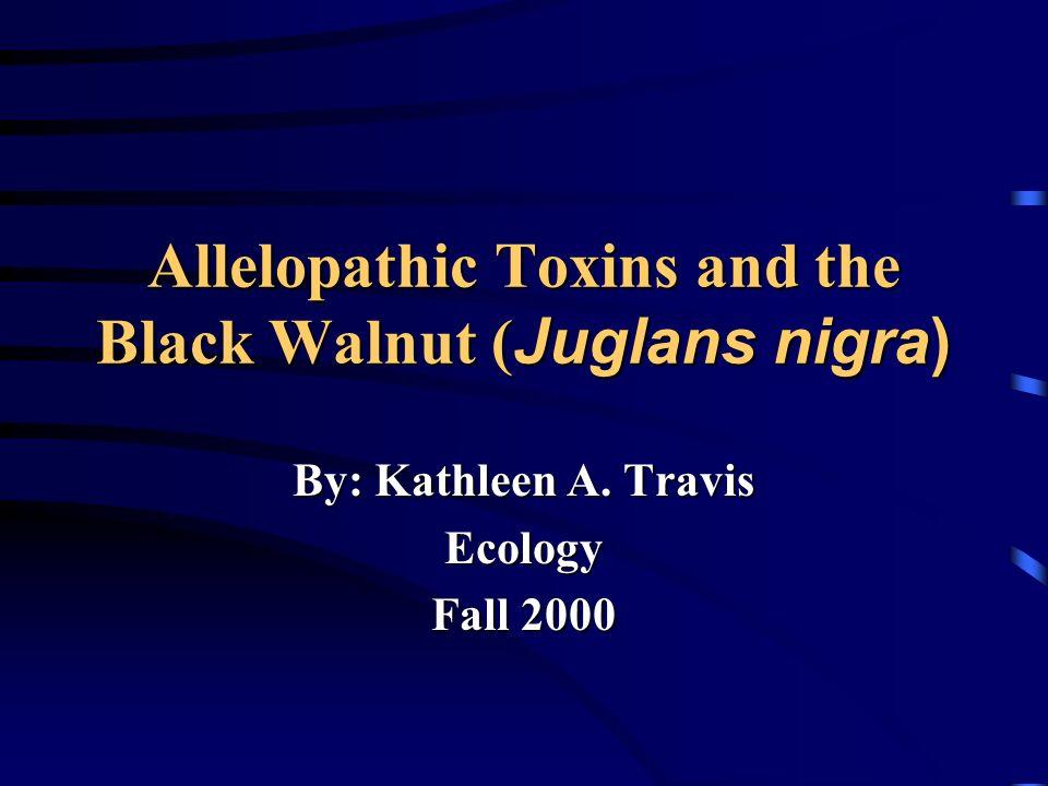 Allelopathic Toxins and the Black Walnut (Juglans nigra)