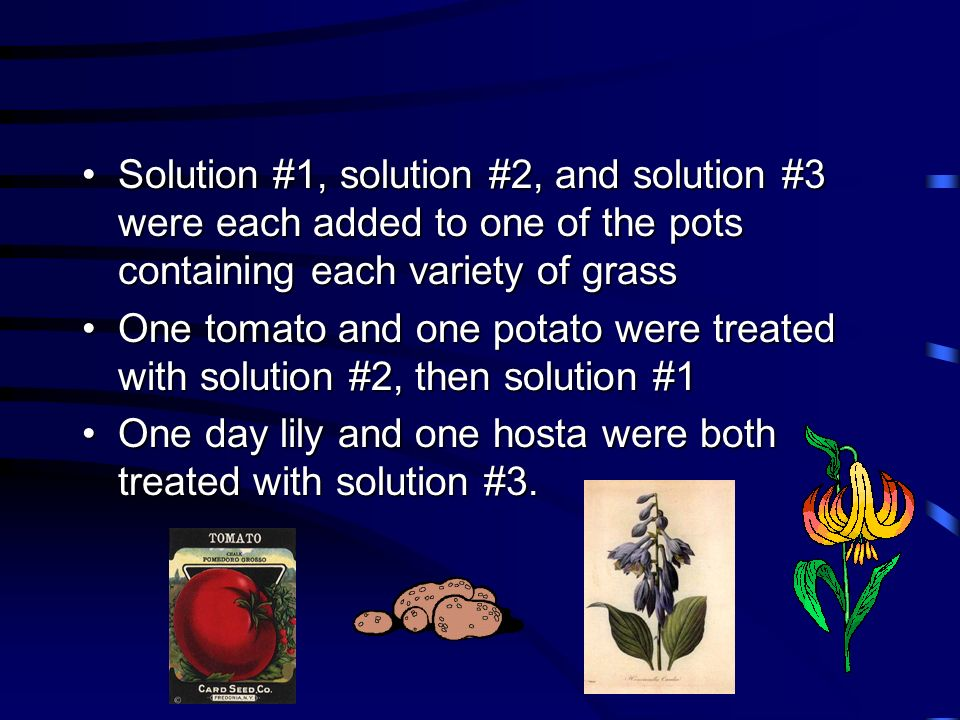 Solution #1, solution #2, and solution #3 were each added to one of the pots containing each variety of grass