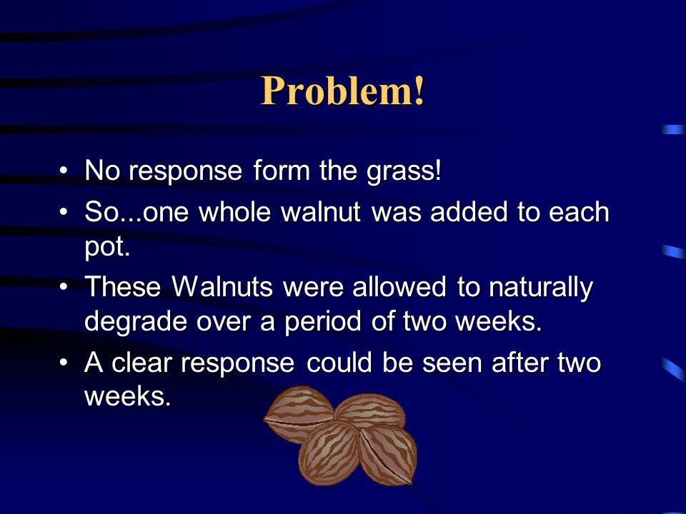 Problem! No response form the grass!