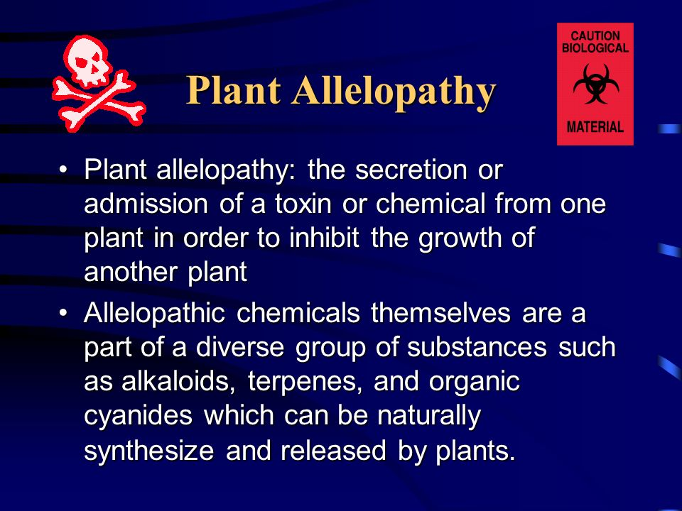Plant Allelopathy Plant allelopathy: the secretion or admission of a toxin or chemical from one plant in order to inhibit the growth of another plant.