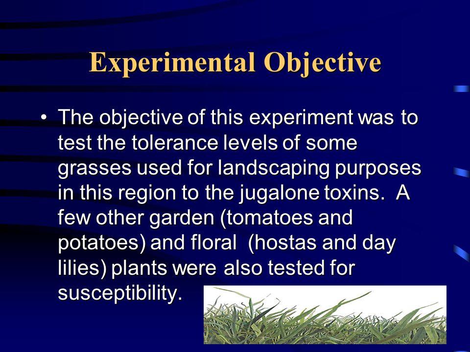 Experimental Objective