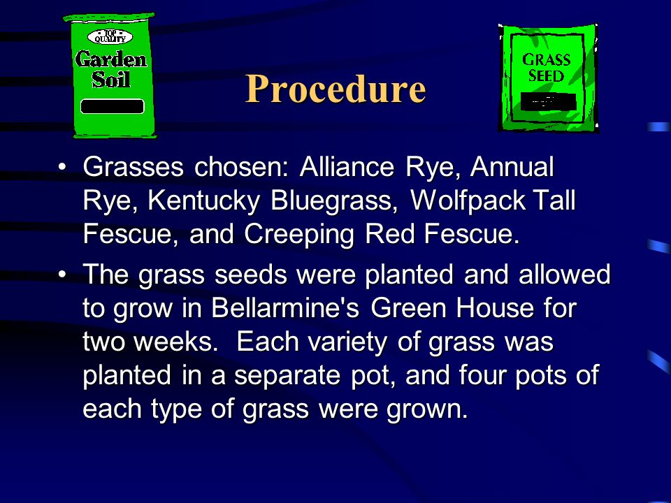 Procedure Grasses chosen: Alliance Rye, Annual Rye, Kentucky Bluegrass, Wolfpack Tall Fescue, and Creeping Red Fescue.