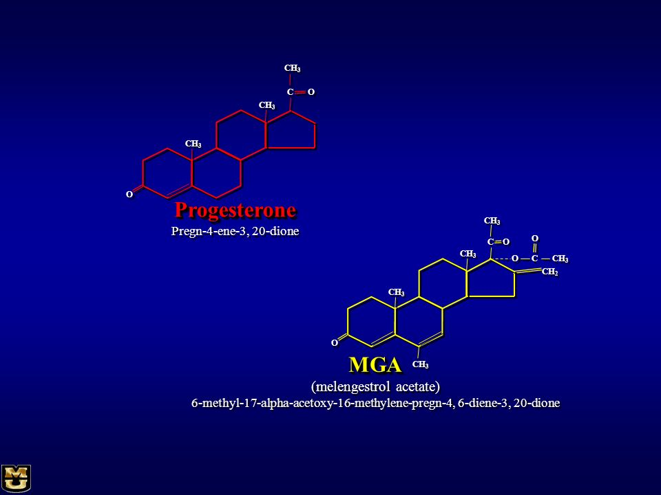 Progesterone MGA (melengestrol acetate) Pregn-4-ene-3, 20-dione