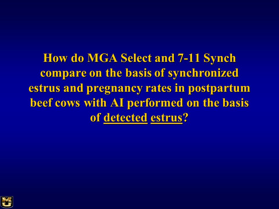 How do MGA Select and 7-11 Synch compare on the basis of synchronized estrus and pregnancy rates in postpartum beef cows with AI performed on the basis of detected estrus