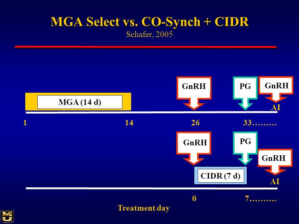 MGA Select vs. CO-Synch + CIDR Schafer, 2005