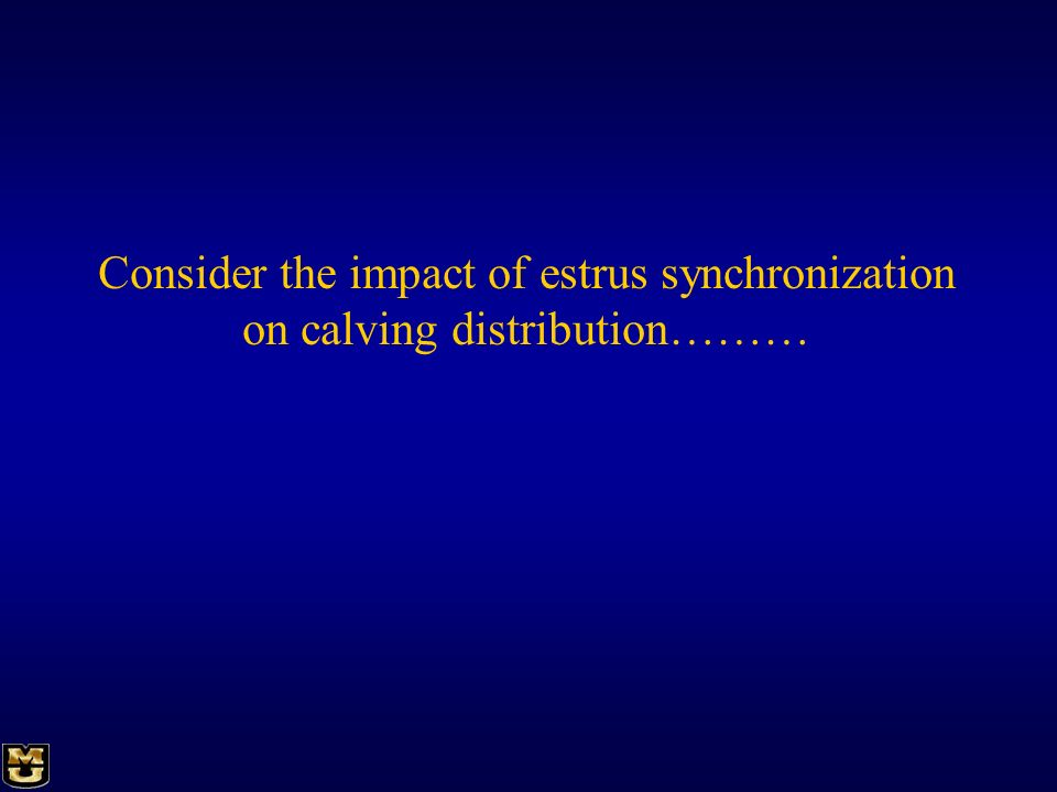 Consider the impact of estrus synchronization on calving distribution………