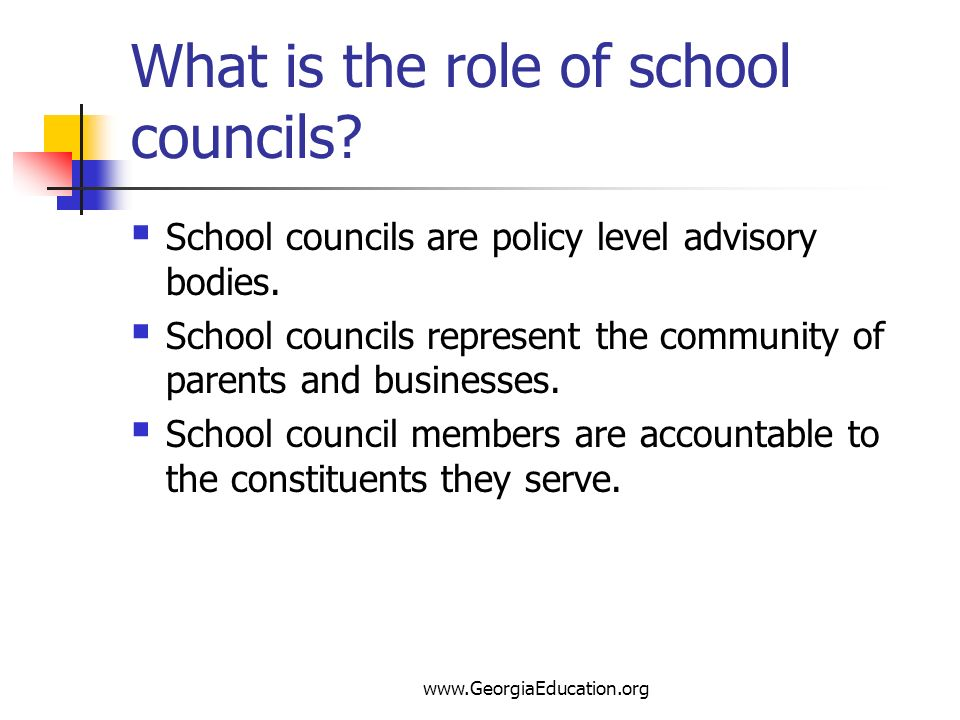 What is the role of school councils