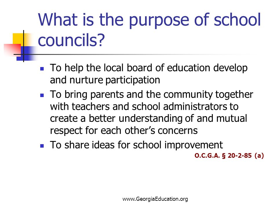 What is the purpose of school councils